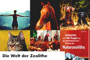die_welt_der_zeolithe